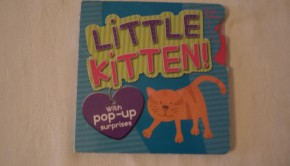 Little Kitten by Louise Martin; Illustrated by Susie Shakir 2009. Parragon